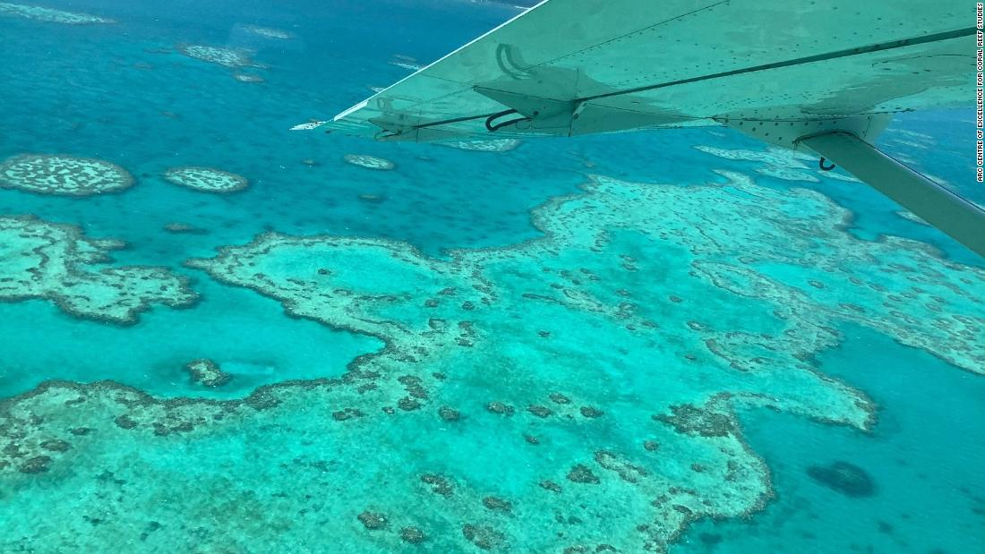 Great Barrier Reef πάσχει τρίτη μαζική λεύκανση εκδήλωση σε πέντε χρόνια