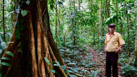 Elicinio Flores walks through his patch of rainforest daily, proud of what he has preserved.