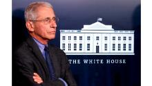 Fauci admits earlier Covid-19 mitigation efforts would have saved more American lives