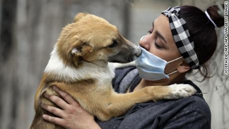 Podemos contraer el virus por nuestras mascotas? - CNN Video