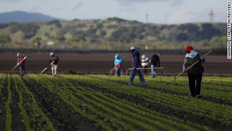 Why California is giving its own stimulus checks to undocumented immigrants