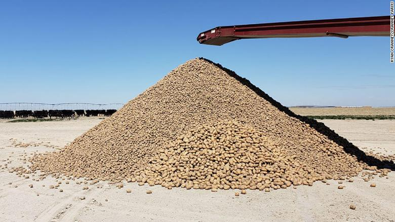 Cranney Farms in Idaho is giving about about 2 million potatoes so they don't go to waste.