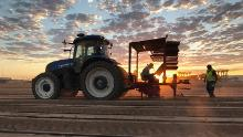 A tractor is seen on McClendon Selects, an organic family farm in Peoria, Arizona.