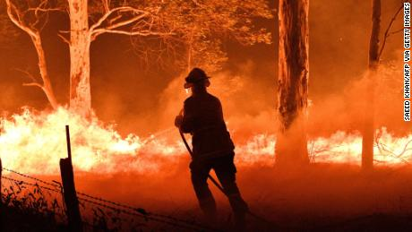 A firefighter hoses down trees and flying embers from bushfires in New South Wales.