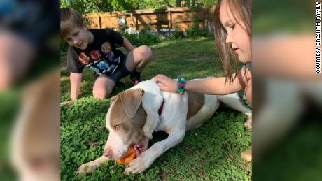 Gresham kids, Henry and Hazel, playing with their new dog, Penny.
