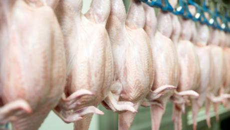 2 million chickens will be killed in Delaware and Maryland because of lack of employees at processing plants