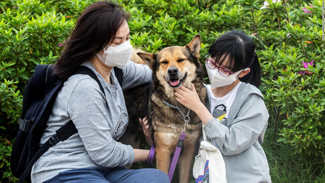 Amy Tran (left) and her daughter Serene Ho cuddle their newly adopted dog Pepper in a dog park at Kai Tak Runway Park in Hong Kong.
