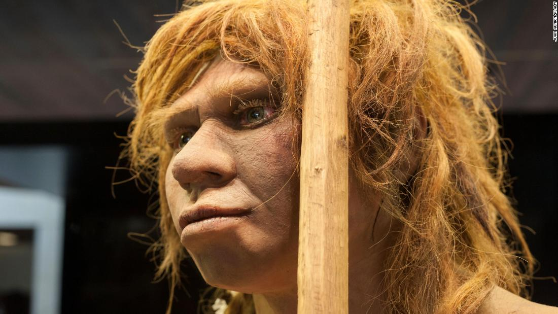 GDNRGN Madrid, Spain - July 10, 2016: Life-sized sculpture of Neanderthal female at National Archeological  Museum of Madrid
