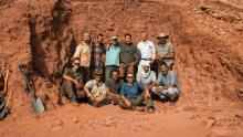 The September 2018 team that unearthed the tail of the only associated Spinosaurus skeleton in existence. Left to right, and top to bottom: Simone Maganuco, Ayoub Amane, M'Barek Fouadassi, Nizar Ibrahim, Samir Zouhri, Cristiano Dal Sasso, Gabriele Bindellini, Marco Auditore, Matteo Fabbri, Diego Mattarelli, Hamid Azroal, Mhamed Azroal.