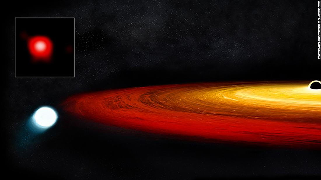 Illustration of Black Hole & White Dwarf Data from Chandra and XMM-Newton indicate that a star survived a close call with a black hole. As a red giant star approached a supermassive black hole in the galaxy GSN 069, it was caught in the black hole's gravity. Once captured, the red giant's outer layers were stripped off, leaving the core of the star — known as a white dwarf — behind. The white dwarf then enters an elliptical, 9-hour-long orbit around the black hole, as depicted in this artist's illustration. At closest approach, the black hole pulls matter from the white dwarf onto a surrounding disk. (Credit: X-ray: NASA/CXO/CSIC-INTA/G.Miniutti et al.; Illustration: NASA/CXC/M. Weiss;)