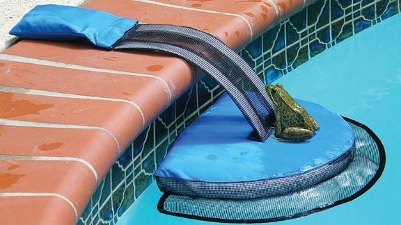 Swimline FrogLog Animal Saving Escape Ramp for Pool