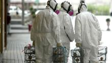 Hong Kong officials place rat traps in an effort to determine whether rats contributed to a 2003 pneumonia outbreak.