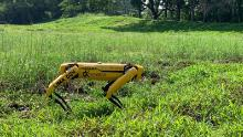 "Spot, the four-legged robot ""dog."""