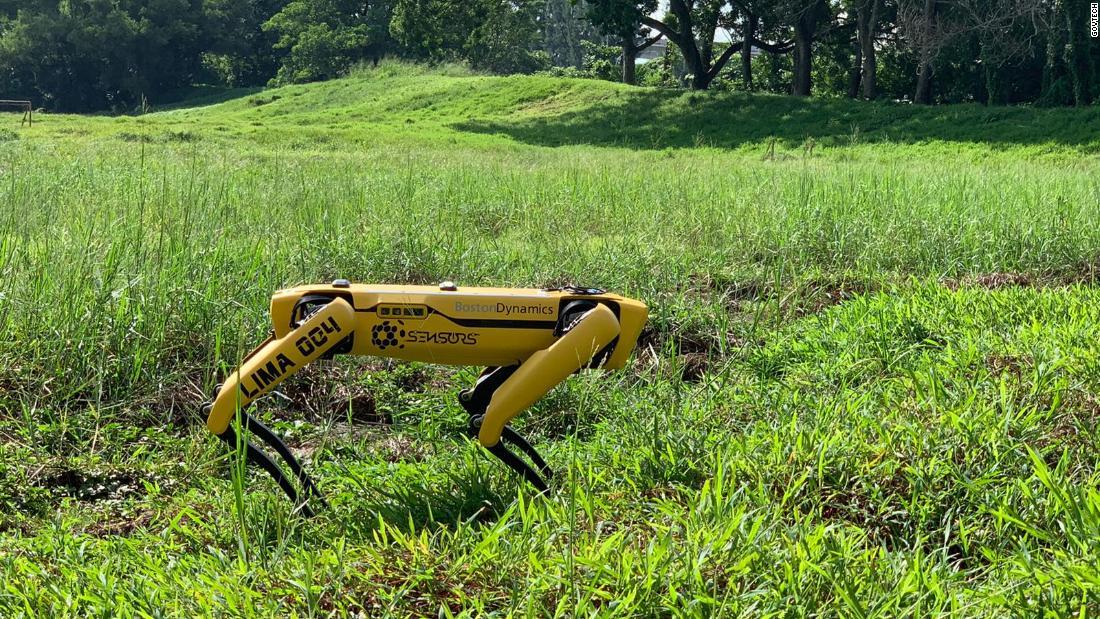 Singapore deploys robot 'dog' to encourage social distancing over coronavirus