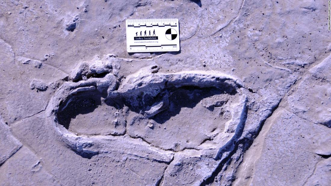 Fossilized human footprints may reveal ancient traditions