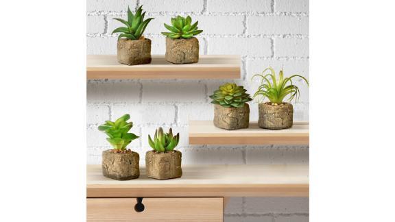 Union Rustic 6 Artificial Agave Succulent in Pot Set