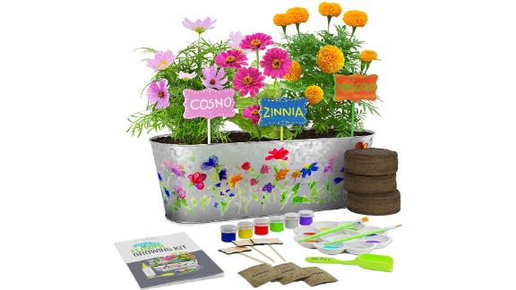 Dan&Darci Paint & Plant Flower Growing Kit