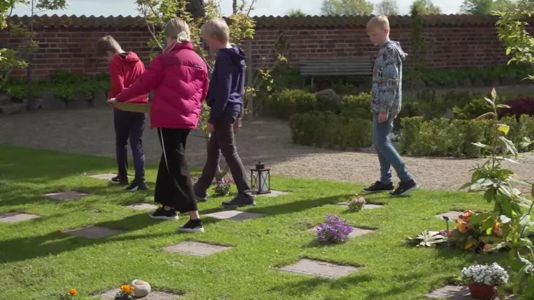students learning in cemetery denmark pleitgen