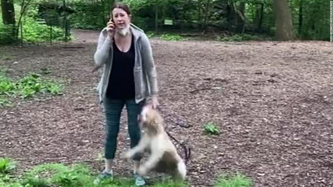 Dog returned to white woman who called police on black man bird-watching in Central Park