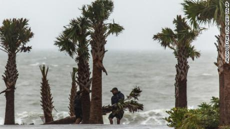 Tom Walsh, of Myrtle Beach Parks and Recreation, removes a downed Palmetto tree as Tropical Storm Bertha lashes the South Carolina coast on Wednesday, May 27, 2020, in Myrtle Beach, S.C. (Jason Lee/The Sun News via AP)