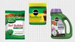 Liven up your lawn with deals on Scotts yard care products at Amazon