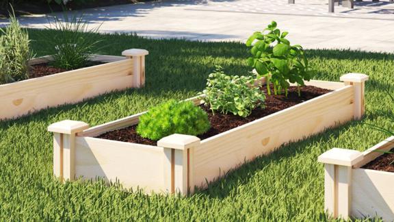 Sol 72 Dontae 4 ft x 1.5 ft Cedar Wood Raised Garden