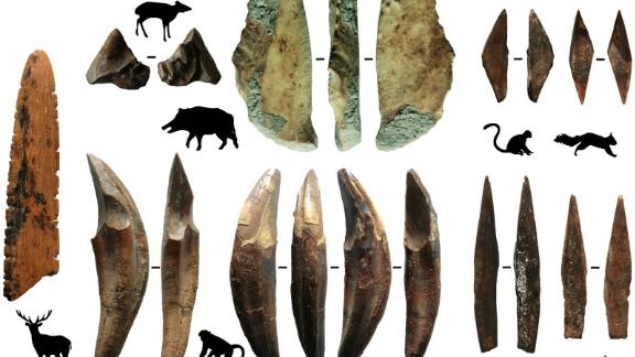 These tools, made from the bones and teeth of monkeys and smaller mammals, were recovered from Fa-Hien Lena cave in Sri Lanka. The sharp tips served as arrow points.
