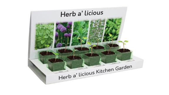 Grow Your Own Herb-a-Licious Kit