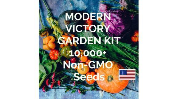 10,000+ Heirloom Seeds Vegetable Seed Pack Kit