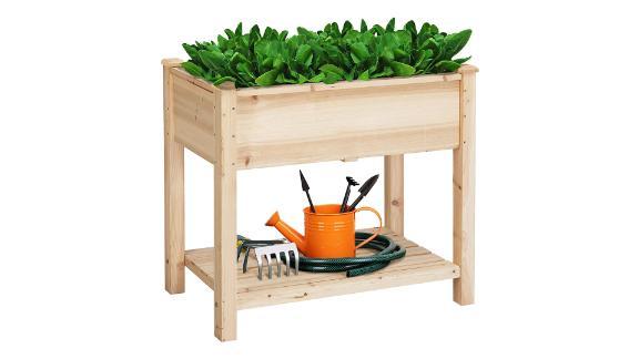 Garden Ideas Easy Vegetables To Grow In Backyard Gardens And Beyond Cnn Underscored