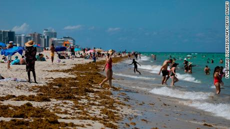 People gather on the beach in Miami Beach, Florida on June 16, 2020. - Florida is reporting record daily totals of new coronavirus cases, but you'd never know it looking at the Sunshine State's increasingly busy beaches and hotels. (Photo by Eva Marie UZCATEGUI / AFP) (Photo by EVA MARIE UZCATEGUI/AFP via Getty Images)