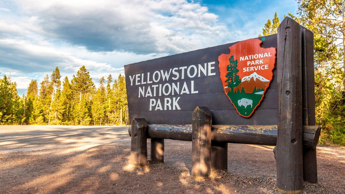 A 72-year-old lady was gored by a bison at Yellowstone National Park when she tried to take an image - CNN thumbnail