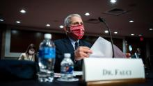 Fauci: US coronavirus cases could rise to 100,000 a day