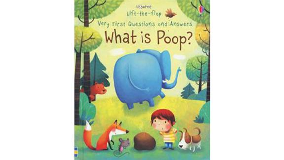 'Usborne Lift-the-Flap Very First Questions and Answers: What is Poop?'