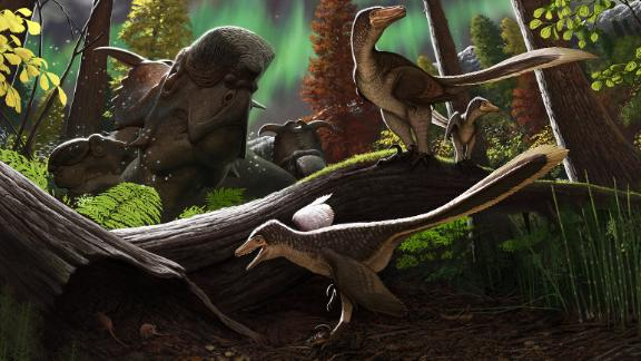 Original artwork from scientific illustrator Andrey Atuchin depicting a riparian environment in the Prince Creek Formation, with a juvenile dromaeosaurid on the branch close to an adult, while a subadult (foreground) stalks a marsupial mouse (Unnuakomys hutchisoni). Individuals of the ceratopsid Pachyrhinosaurus perotorum rest in the background.