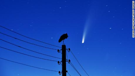A stork stands on a power lines pillar as the comet NEOWISE is seen in the sky above the village of Kreva, some 100 km northwest of Minsk, early on July 13, 2020.