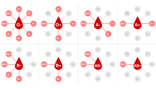 Why do we have different blood types — and do they make us more vulnerable to Covid-19?