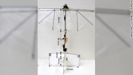 Meet the flying robot that can glide, flip and hover