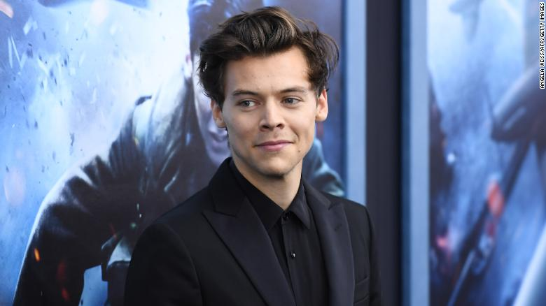 Harry Styles sounds like an ideal housesitter