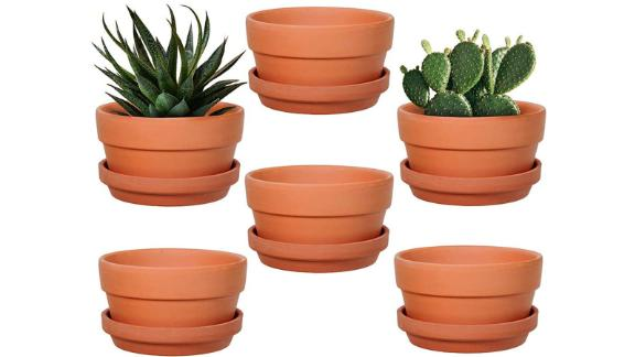 "Winlyn 6-Pack 5"" Terracotta Shallow Succulent Pot With Saucer"