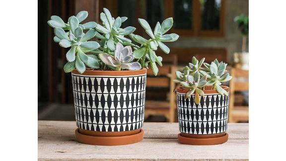 D'vine Dev Set of 2 Geometric Seamless Design Terracotta Planter Pot