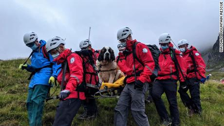 A 121-pound St. Bernard named Daisy was rescued from England's Scafell Pike on Friday.