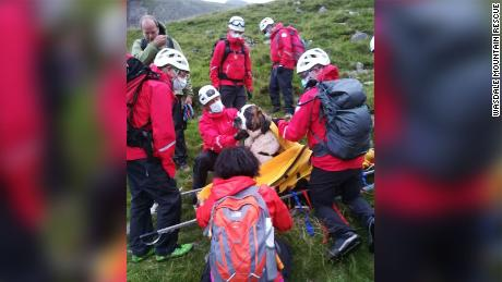 Rescuers put Daisy on a stretcher to safely bring her down Scafell Pike.