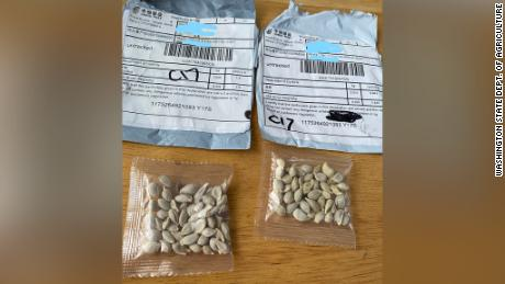 Warnings about unsolicited packages of seeds that appear to be coming from China have now extended to all 50 states.