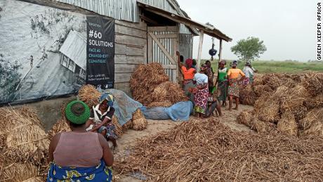 La startup ofrece programas de capacitación a los trabajadores locales, enseñándoles la mejor manera de cosechar y compostar el jacinto de agua.