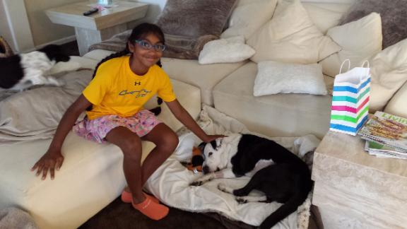 Meena Kumar pet sits in her home to raise money for Muttville Senior Dog Rescue.