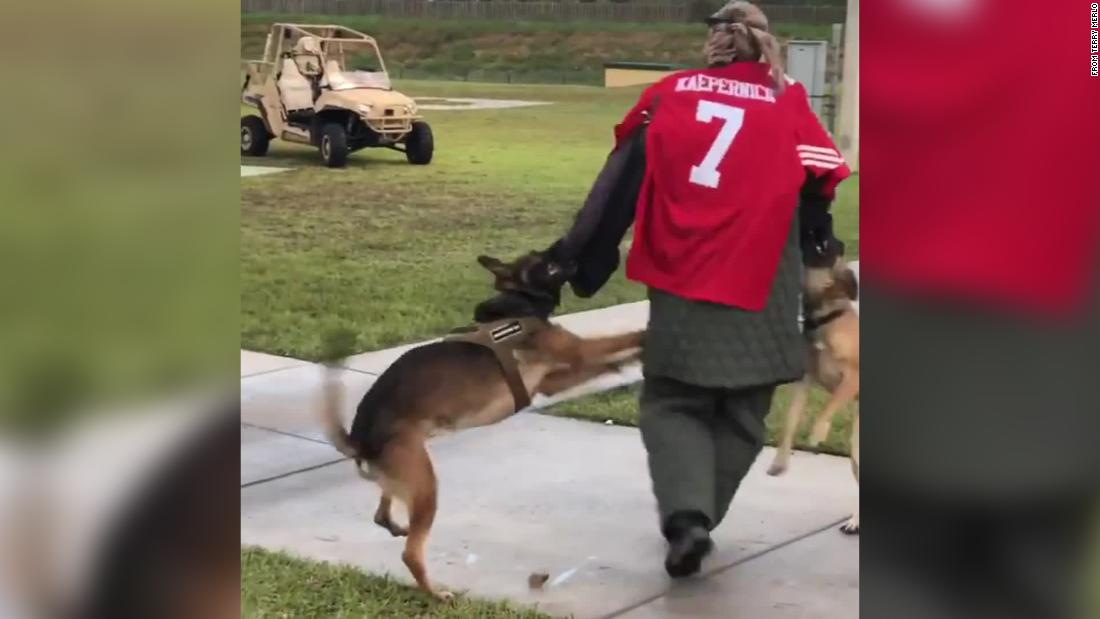 US Navy investigating incident in which SEAL Museum used Kaepernick 'target' for dogs