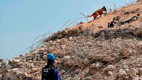 A Russian rescue worker and dog search the Beirut port on Friday.