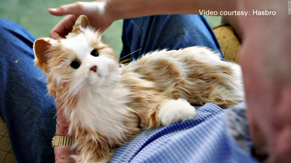 Lifelike robotic pets are helping isolated seniors avoid loneliness