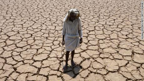 A farmer stands in a dried up field during a drought in the southern Indian state of Telangana.